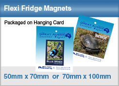 packaged-magnets.jpg